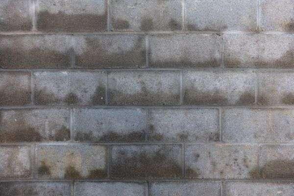 crawl space dehumidifier reduced moisture